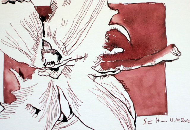 Buchecker - 17 x 22 cm - Tusche auf Aquarellkarton (c) Zeichnung von Susanne Haun