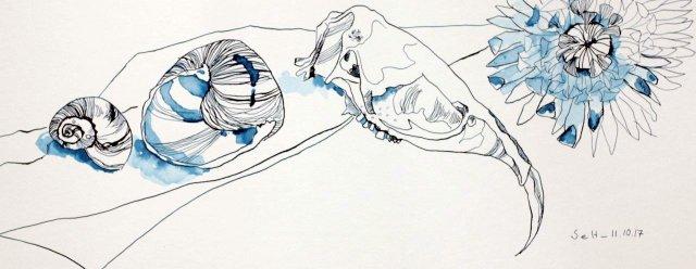 Freundschaft - Vanitas Stillleben Vers. 2 - 20 x 50 cm - Hahnemühle Aquarellkarton (c) Zeichnung von Susanne Haun